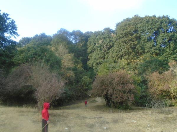 Deurail hills before Bagdwar