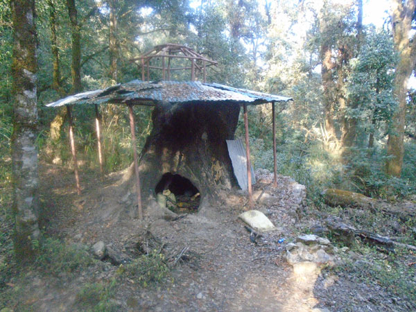 Tree cave near bagdwar and shivapuri cave