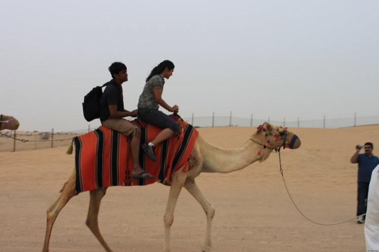 Kathmandu to Dubai tour Package organized by the Kathmandu to Dubai tour agency. Book Kathmandu to Dubai tour Cheap Package with Green City Travels and Tours