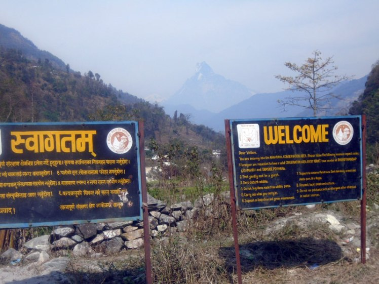 Green city travel and tours organized the tours and trekking Nepal